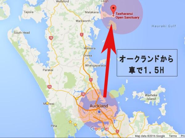 open sanctuary tawharanui google map タファラヌイ 自然公園 オークランド タカへ